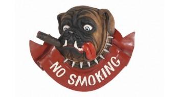 No Smoking Dog