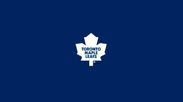 Tapis de table de billard - Toronto 4' x 8'