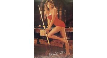 Billiard Poster Elisa