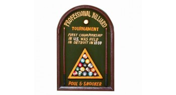 Professional Billiard